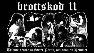 Brottskod 11 - Grundat För Hycklare (Svart Parad cover)