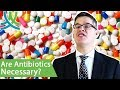 How Do Antibiotics Work? - Alternatives To Antibiotics