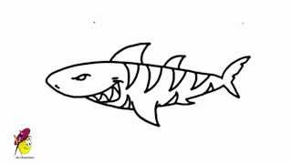 How to draw a Scary Shark