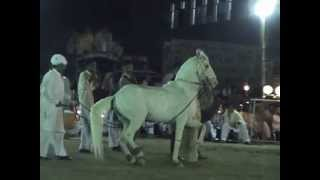 Horse Dance Dadyal Anb 28 June 10