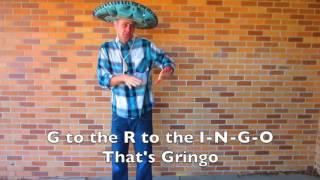 Gringolicious (Fergalicious Parody)