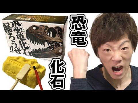 恐竜の化石掘ってみた!!