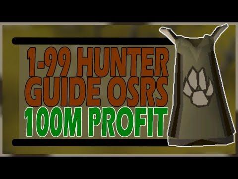 ULTIMATE 1-99 HUNTER GUIDE | 100M PROFIT