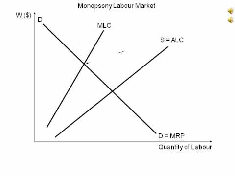 Animated diagram showing monopsony labour market