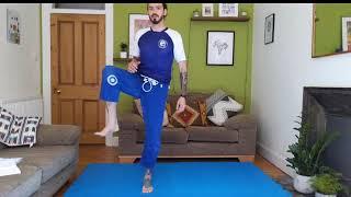 BJJ At Home Live Stream 2/5/20 - Jiu Jitsu Mobility, MMA HIIT Workout, Solo Drills