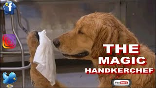 THE MAGIC HANDKERCHIEF - Face2face Comedy - Very Funny Comedy - 2018 Comedy Skit