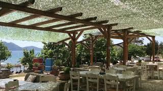 Zanzibar Beach Bar
