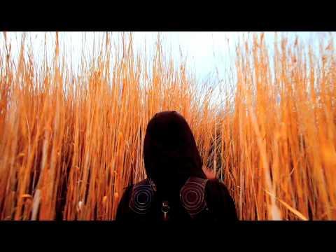"""Chris Garneau - """"Fireflies"""" Mp3"""