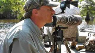 wildlife photography with ben clewis at lake marion sc