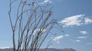 Mary McCaslin - Prairie In The Sky