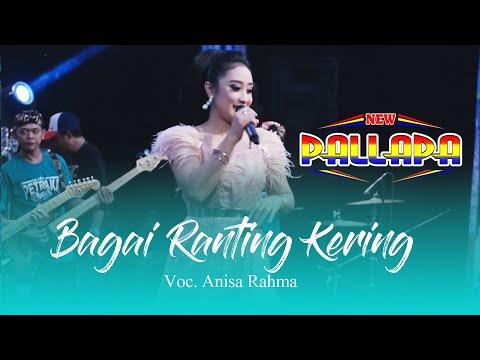 Bagai Ranting Kering - New Pallapa Live Petraka