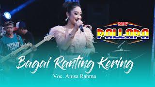 Bagai Ranting Kering New Pallapa Live Petraka.mp3
