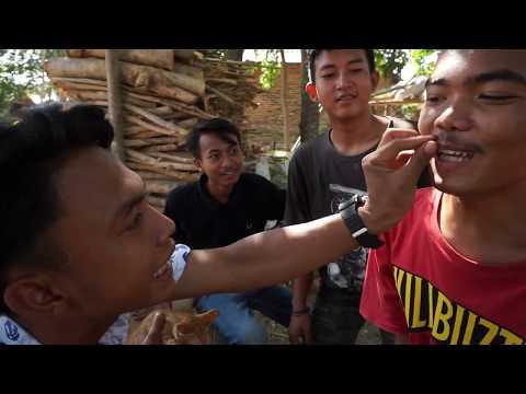 Film Pendek // ANAKAN KUCING