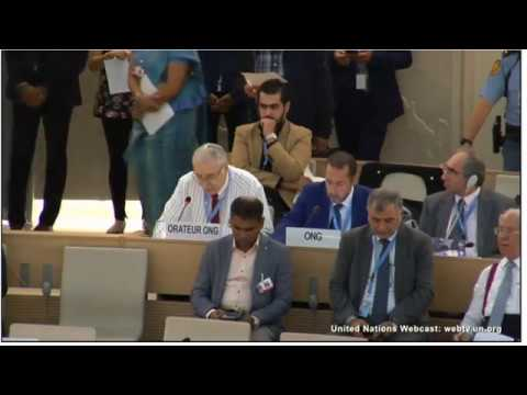 Prof. Gerald Steinberg, speaking at the UN HRC, Sept. 26, 2017
