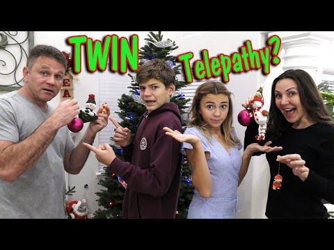 TWIN TELEPATHY CHRISTMAS DECORATING CHALLENGE   We Are The Davises