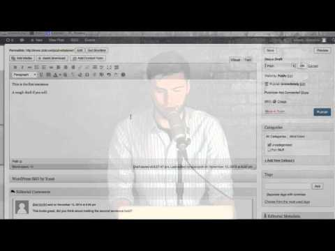 Organize Content Creation on WordPress with Plugins - SEO Lunch