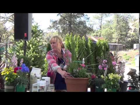 03 21 15 Advanced Container Gardening