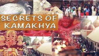 Secrets of Kamakhya Temple - Documentary | Amartya Saha | Amos Entertainment