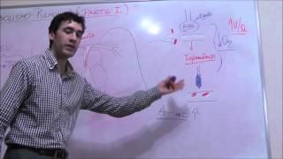 Icd 9 pulmonar tromboembolismo