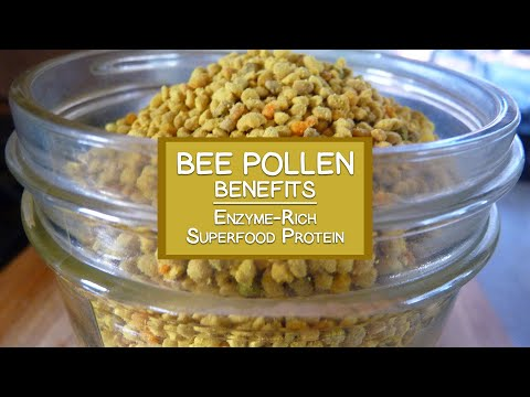 Bee Pollen Benefits As An Enzyme