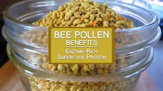 Bee Pollen Benefits as an Enzyme-Rich Superfood Protein Source
