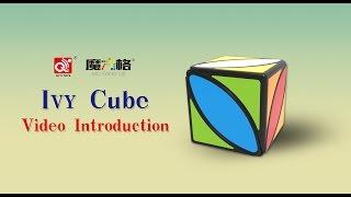 Ivy Cube-- First twist cube of QiYi Mofangge Cube