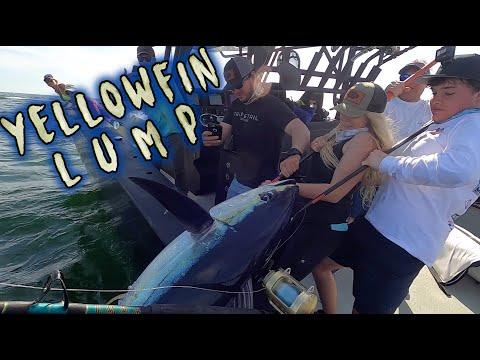HUGE Yellowfin Tuna Loses Tail To Mako Shark   Offshore Fishing In Venice, LA