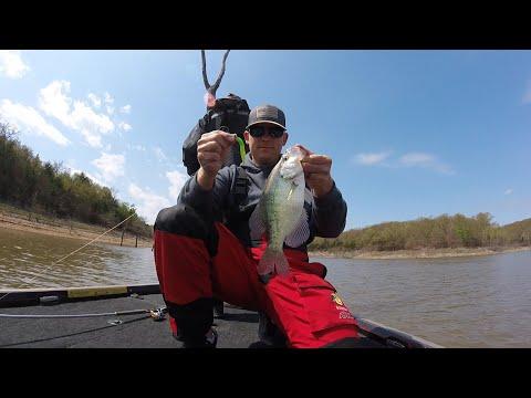 Truman Lake (Bucksaw) LiveScope Crappie Fishing