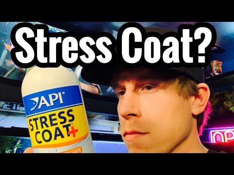 API Stress Coat Review - Stressed Fish? Aloe Vera?