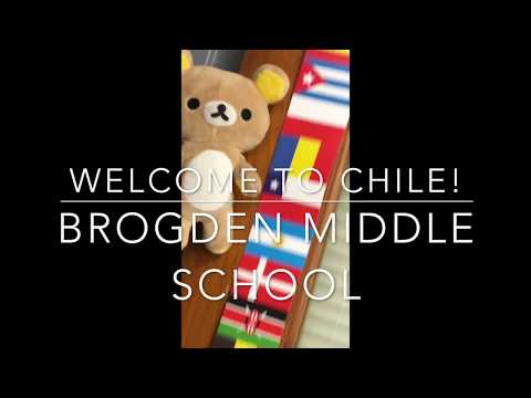Facts about Chile   Brogden Middle School