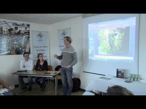 L'élevage d'ormeaux en Bretagne