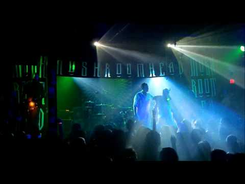 mushroomhead old school show 2013 at peabodys 7/20/13 full set 720p shot by spider