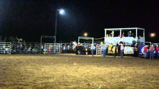 Gray Horse Roping Run - Perry