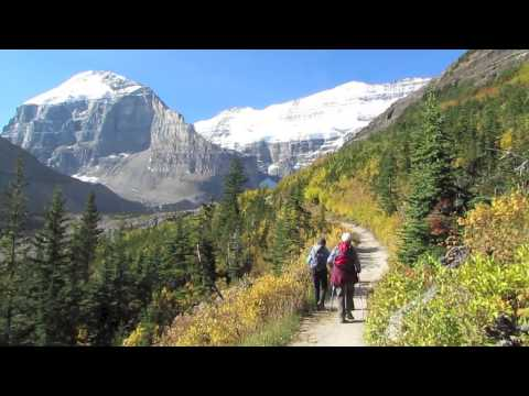 Enjoy the Seasons with Nature in Focus Hiking Co Banff