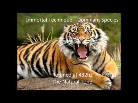 Immortal Technique - Dominant Species 432 hz