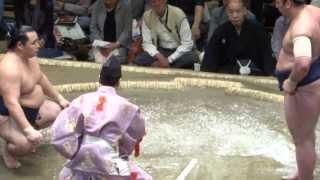 20130518 大相撲夏場所7日目 鶴竜vs栃ノ心 鶴竜万全 7連勝.