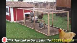 Simple Chicken Coop - Build A Chicken House Myself?