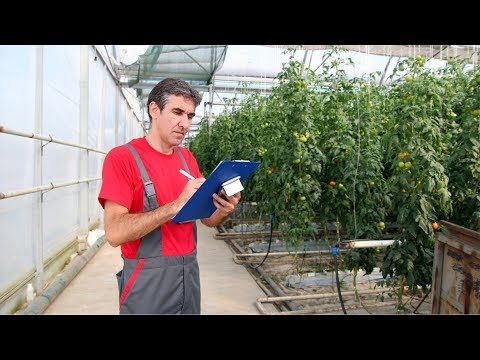 Nursery and Greenhouse Manager Career Video