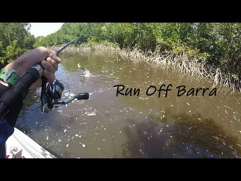 Run Off Barra Fishing | Townsville, North Qld