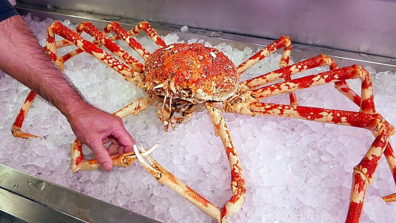 Japanese Street Food - $500 GIANT SPIDER CRAB Seafood Okinawa Japan