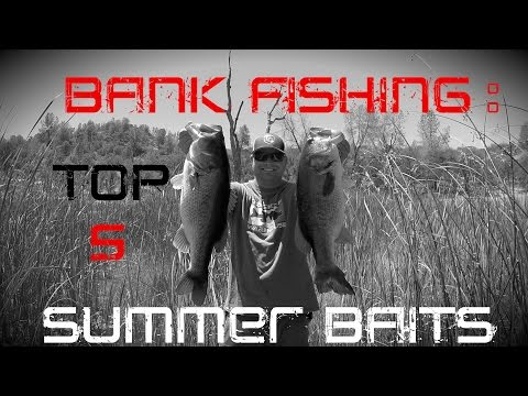 Best Baits For Summer Bank Fishing