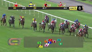 Vidéo de la course PMU PRIX COURSE 08