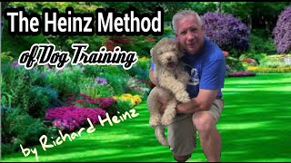 Amazing Puppy Training! 4 Month Old Puppy Off Leash