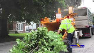 Advanced Tree Care - Urban Tree Care