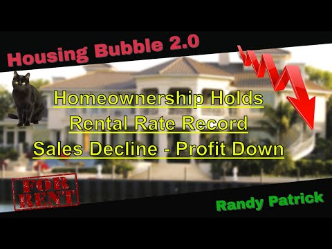 housing-bubble-2.0---homeownership-holds---rental-rate-record---sales-decline-&-home-profit-down