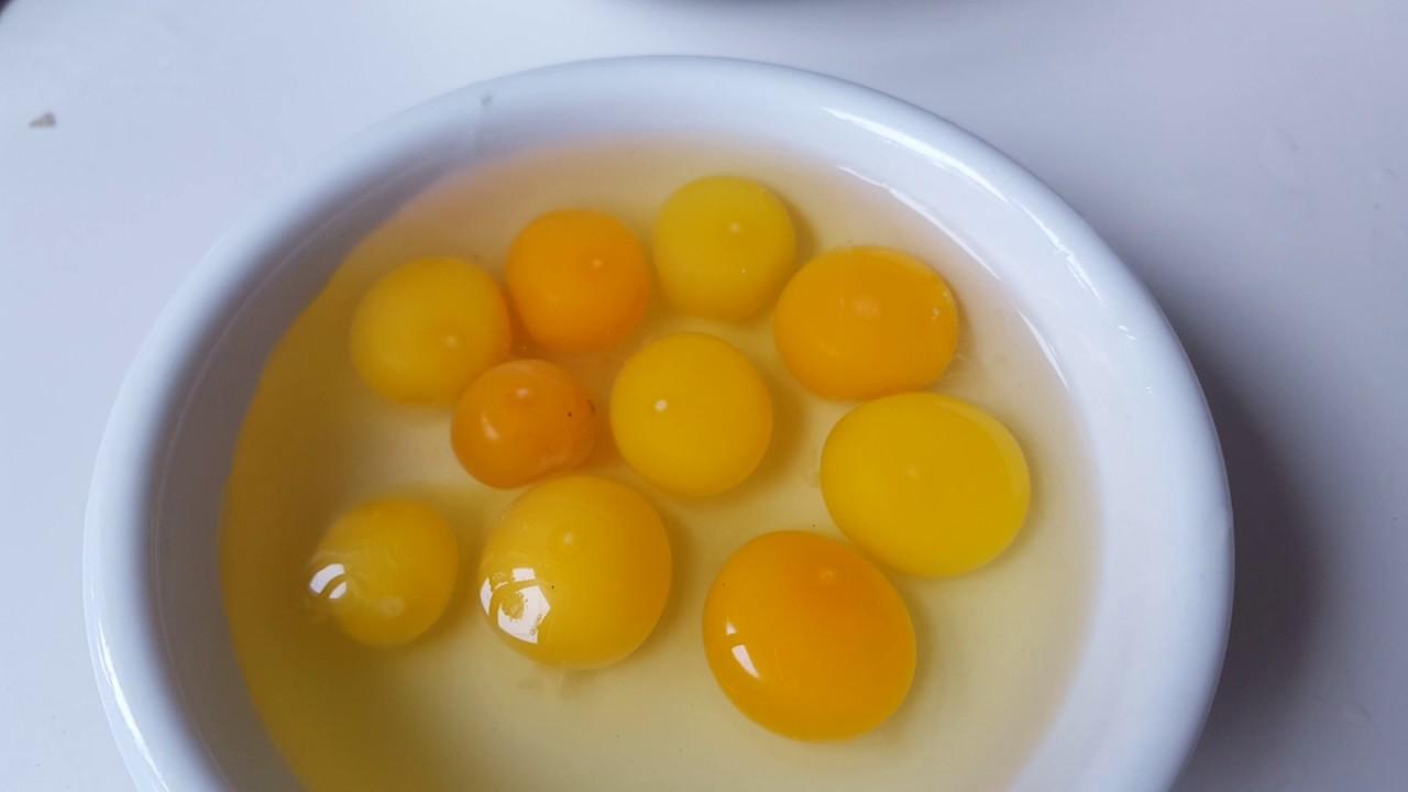 Как определить, оплодотворено яйцо или нет? До инкубации!