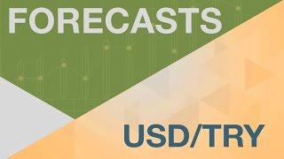 美元/土耳其里拉货币对预测