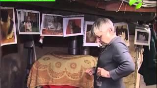 Сквер сибирских кошек в Тюмени также напоминает о событиях ВОВ