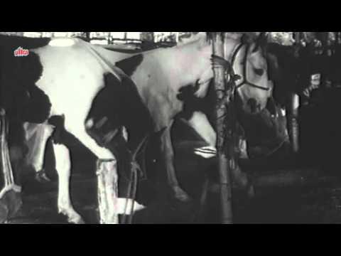 Hasna Gana Mauj Udana - Fearless Nadia, John Cawas, Circus Queen Song