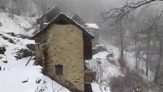 Zonca im Schnee - Teil 1 - 2. März 2018